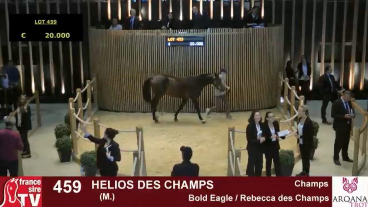 helios-des-champs-1200x675