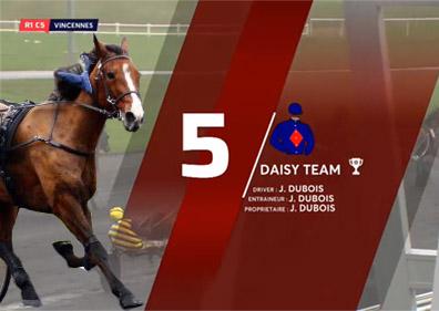 Daisy Team
